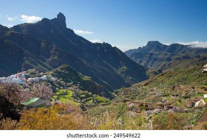 Gran Canaria, Caldera de Tejeda in winter, almond trees in full bloom