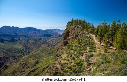 Gran Canaria, February, Caldera de Tejeda, hiking path from Cruz de Tejeda to Artenara