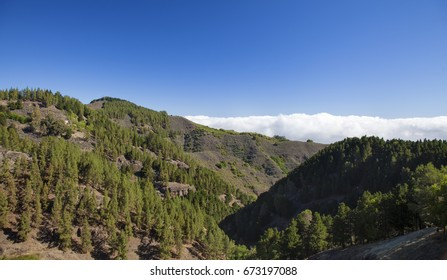 Gran Canaria,  July, central areas  landscape, sea of clouds in the distance
