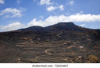 Gran Canaria, Las Cumbres, the highest areas of the island, after forest fire of september 2017, burned mountain close to Degollada de Becerra