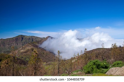 Gran Canaria, March 2018,  view over an area affected by wildfire towards small valley filled with clouds