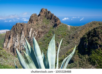 Gran Canaria, March, view from a hiking path in Valsequillo municipality towards rock formation Roques de Tenteniguada