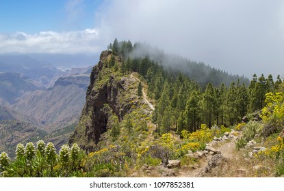 Gran Canaria, May, hiking route Cruz de Tejeda - Artenara, path going up Montana de Artenara, cloud moving into caldera from the right