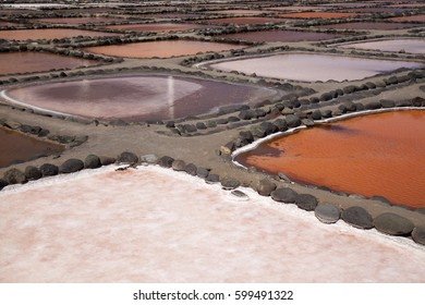 Gran Canaria, Salt evaporation ponds Salinas de Tenefe, south east of the island, pink color created by  algae Dunaliella salina