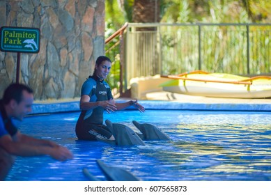 GRAN CANARIA, SPAIN - MARCH 10 2017 - Dolphins show at Palmitos Park in Maspalomas, Gran Canaria, Spain