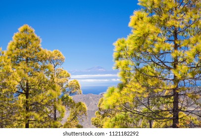 Gran Canaria, view from Las Cumbres, the highest areas of the island, towards Teide on Tenerife