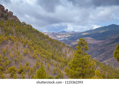Gran Canaria, view from Las Cumbres, the highest areas of the island, to the south