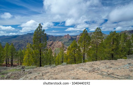 Gran Canaria, view south from hiking path in  from Las Cumbres, the highest areas of the island