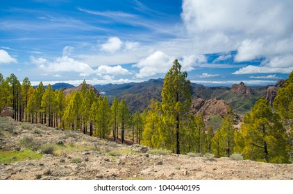 Gran Canaria, view south west from hiking path in  from Las Cumbres, the highest areas of the island