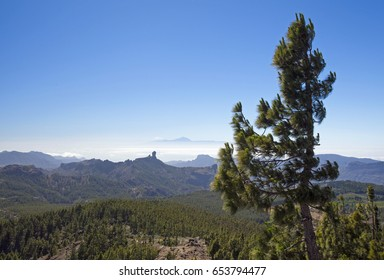 Gran Canaria, walking excursion starts from Pico de Las Nieves, the highest point of the island, down in the direction of Roque Nublo, Teide on Tenerife visible over the cloud layer