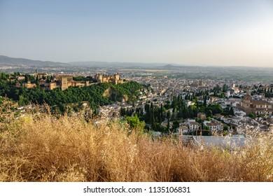 Granada Albaicin and Alhambra at dusk behind bush, top view