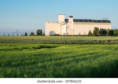 Granaries for storing wheat and other cereal grains in French countryside