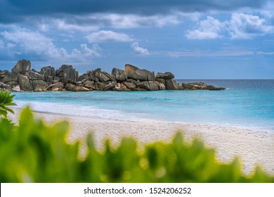 Grand Anse beach at La Digue island in Seychelles. White sandy beach with blue ocean lagoon. Green defocused foliage leaves in foreground