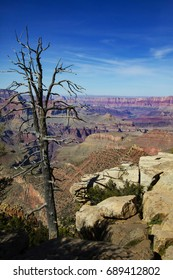 The Grand Canyon in Arizona, Surreal view, wild colors and breath taking views, Millions from around the world come to visit every year!
