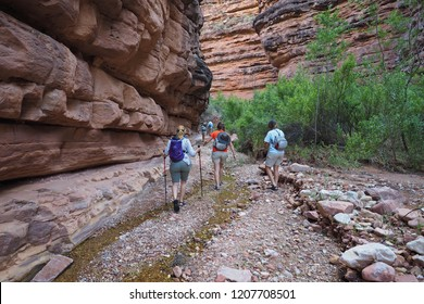 Grand Canyon National Park, Arizona - 05/24/2016: Hikers explore Hance Creek during some backpacking downtime in the Grand Canyon.