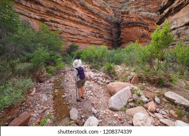 Grand Canyon National Park, Arizona - 05/24/2016: Woman explored Hance Creek during some backpacking downtime in the Grand Canyon.