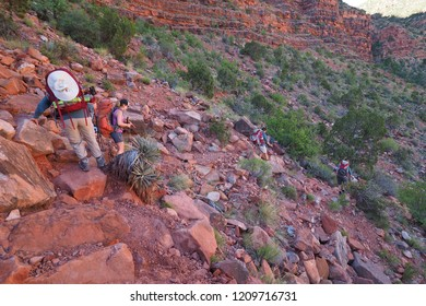 Grand Canyon National Park, Arizona - 05/27/2016: Women backpackers ascend a particularly challenging section of the New Hance Trail in Grand Canyon National Park.