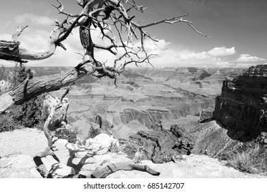 Grand Canyon National Park in Arizona, United States. Colorado River visible. Mohave Point view. Black and white vintage photo.
