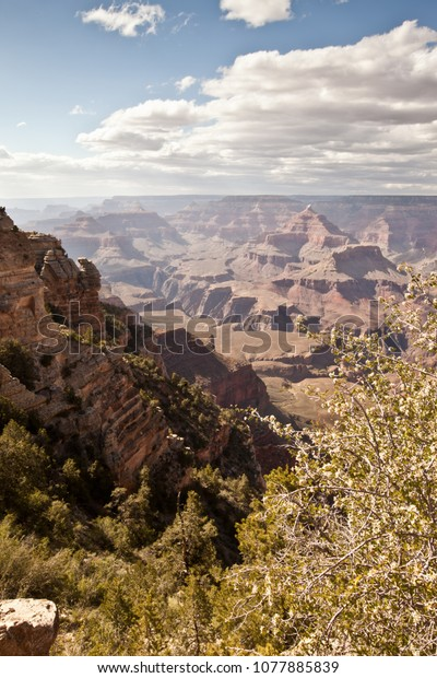 Grand Canyon National Park - summer visit to the park from various viewpoints