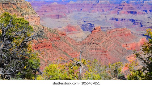 Grand Canyon is a steep-sided canyon carved by the Colorado River  adjacent rim are contained within Grand Canyon National Park, the Kaibab National Forest, Grand Canyon-Parashant National Monument