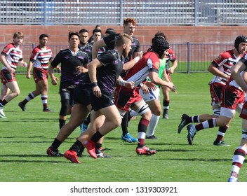 Grand Canyon University Lopes woman's Rugby at GCU Stadium in Phoenix, Arizona/USA February 16,2019.