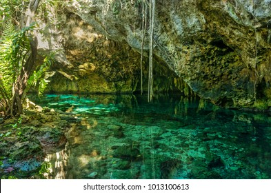 Grand Cenote. This is one of the most famous cenotes in Mexico.