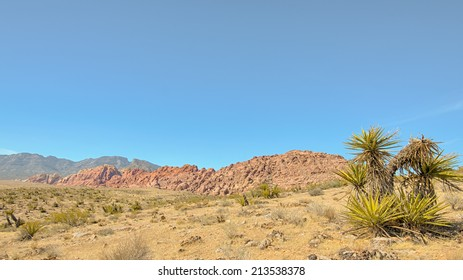 Grand Circle, Red Rock Canyon National Conservation Area, NV