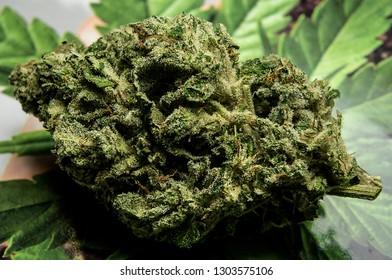 Grand Funk OG cured cannabis flower macro shot.