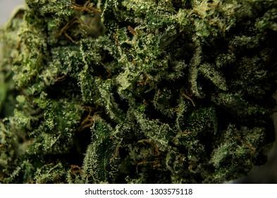 Grand Funk OG cured cannabis flower macro shot