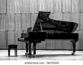 Grand piano B&W