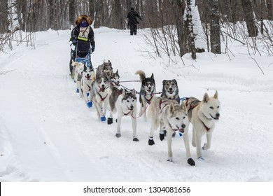 GRAND PORTAGE, MN - JANUARY 29, 2019: Jennifer Freking comes in to Mineral Center checkpoint during the John Beargrease Sled Dog Marathon. Freking finished 2th on January 29th.