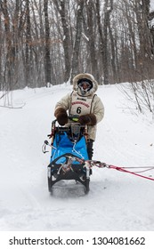 GRAND PORTAGE, MN - JANUARY 29, 2019: Erin Altemus comes in to Mineral Center checkpoint during the John Beargrease Sled Dog Marathon. Altemus finished 5th on January 29th.