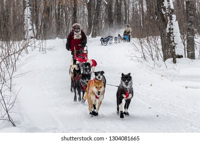 GRAND PORTAGE, MN - JANUARY 29, 2019: Peter McClelland followed by Erin Altemus at Mineral Center during the John Beargrease Sled Dog Marathon. McClelland finished 7th and Altemus 5th on January 29th.