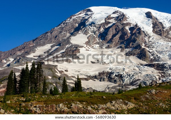 Grand Summit with trees, Mount Rainier National Park