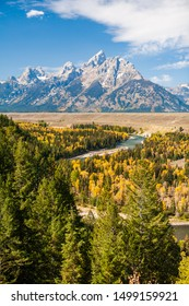 Grand Teton Mountain Range forms the background of the Snake River and fall colors of a grove of aspen trees, Grand Teton National Park, Wyoming