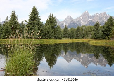 Grand Teton Mountains and pine trees reflecting in water