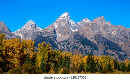 Grand Teton National Park  autumn  Wyoming USA
