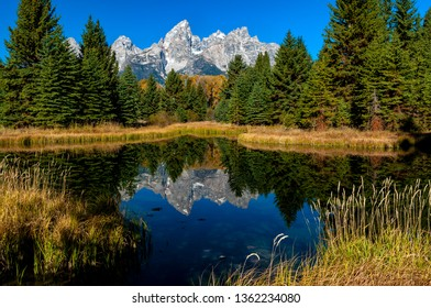 Grand Teton Reflection at Schwabacher's Landing