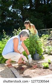 Granddaughter helping grandmother digging in vegetable garden