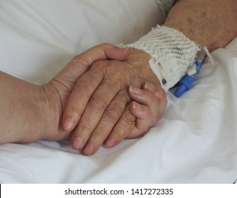 Granddaughter lovingly holding her grandmother's hand at the hospital
