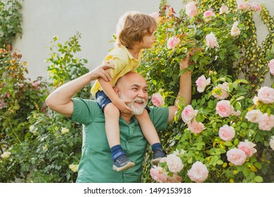 Grandfather carrying his grandson having fun in the park at the summer time. Father giving son ride on back in park. Happy grandfather giving grandson piggyback ride on his shoulders and looking up