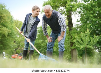 Grandfather with grandkid cleaning garden with rake
