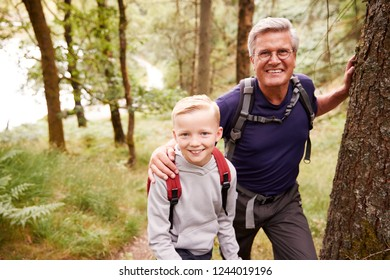 Grandfather and grandson taking a break while hiking together in a forest, close up, smiling to camera
