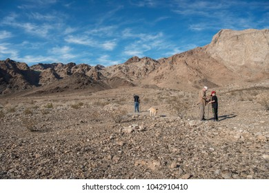 Grandfather showing grandson fossils at Marble Mountains in the Mojave desert with a dog