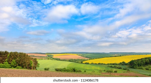 Grandiose vistas of colorful spring fields with yellow rapeseed, green wheat  and uncultivated plots of land at a blue sky background