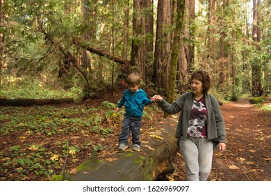 Grandma and grandson holding hands hiking in forest