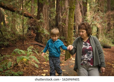 Grandma and grandson walking in the forest holding hands