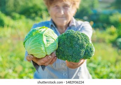 grandmother with cabbage and broccoli in her hands. Selective focus.