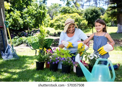 Grandmother and granddaughter gardening in the park on a sunny day