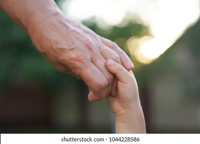 Grandmother and grandson holding hand in hand